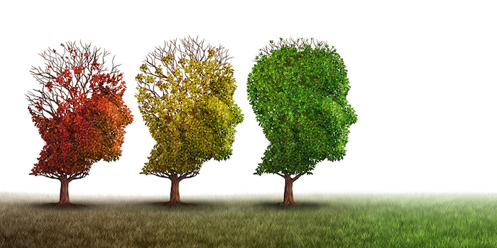 Dialysis and Dementia: Four Very Different Conversations