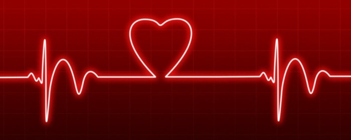 From the Patient's Perspective: How to Protect Your Heart?