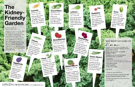 The Kidney-Friendly Garden